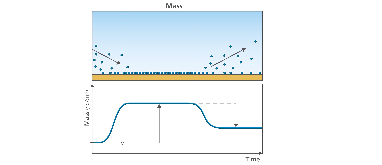 Fig 1. QSense Mass