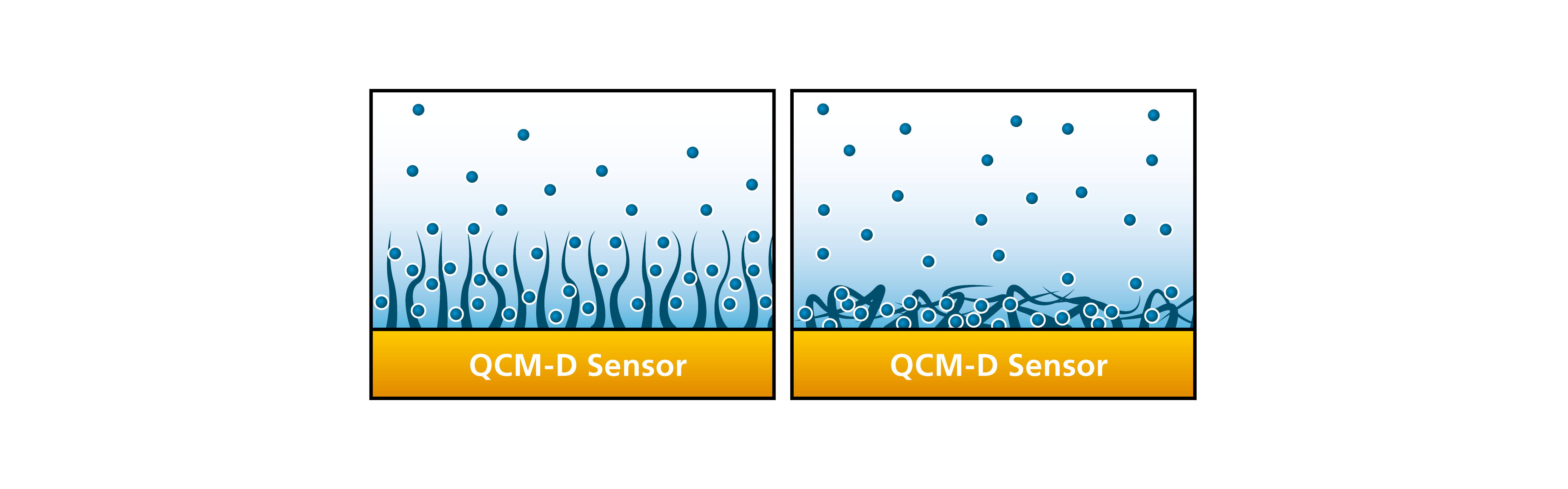Fig 6. QSense different degrees of hydration