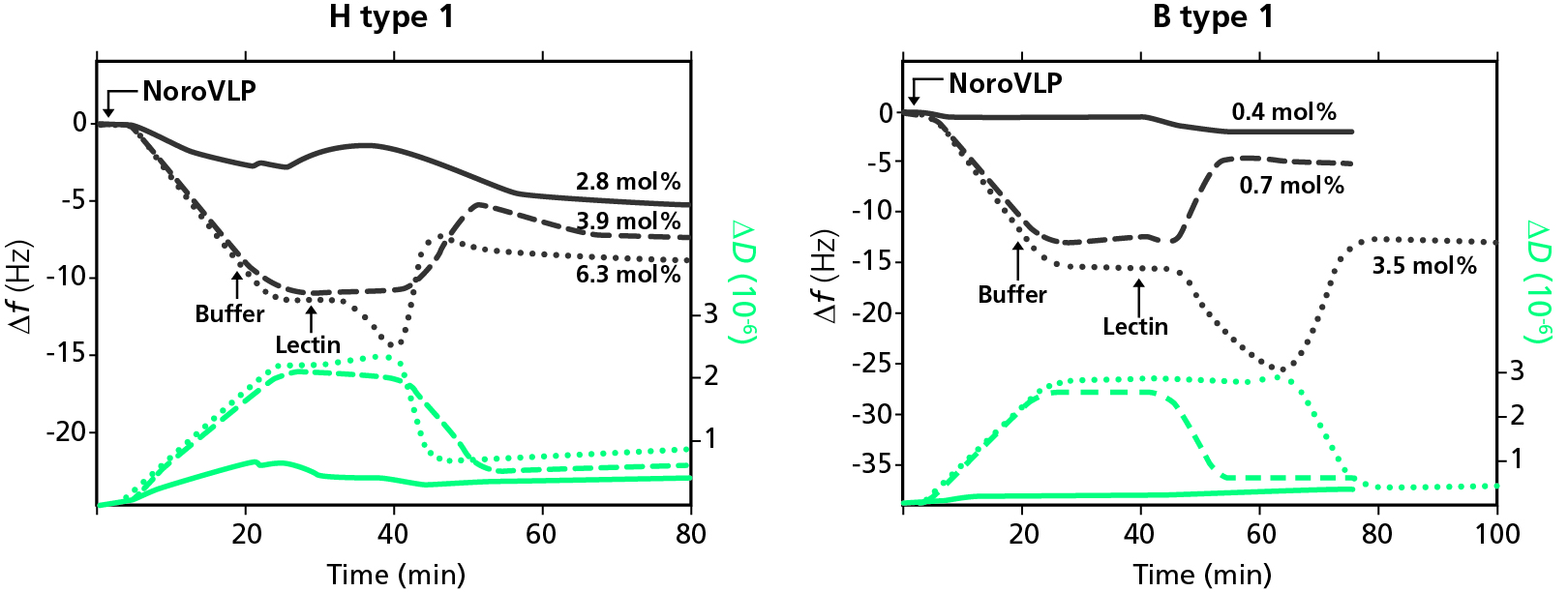 Fig Noro VLP Lectin raw data