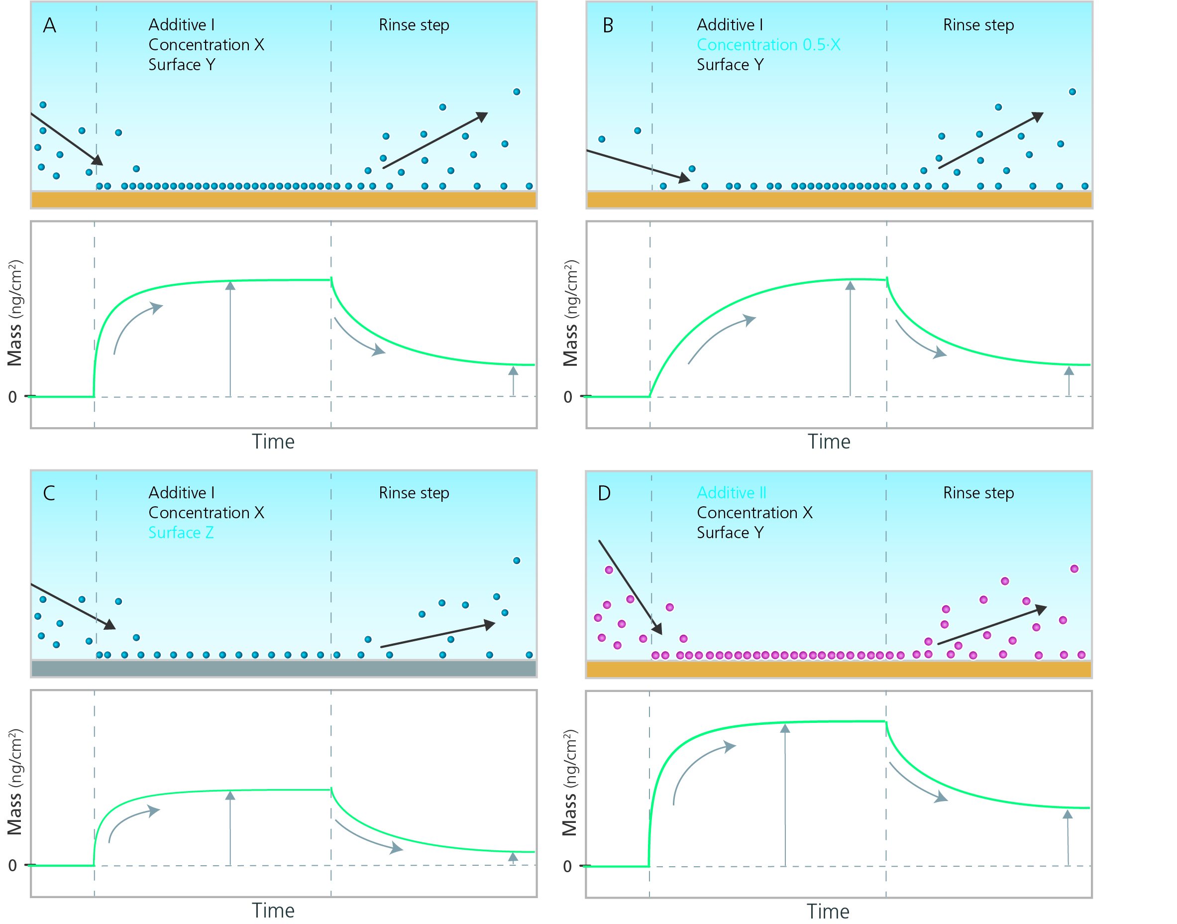Molecule adsorption and desorption example CMP