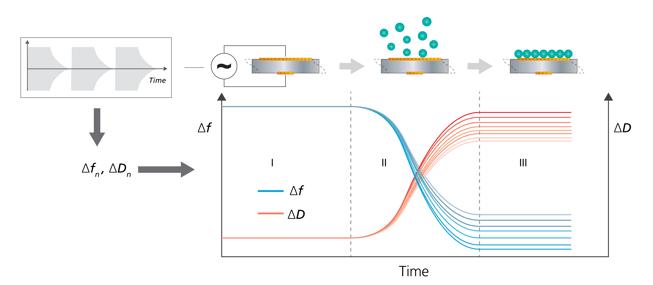 QCM-D working principle multiple harmonics-2