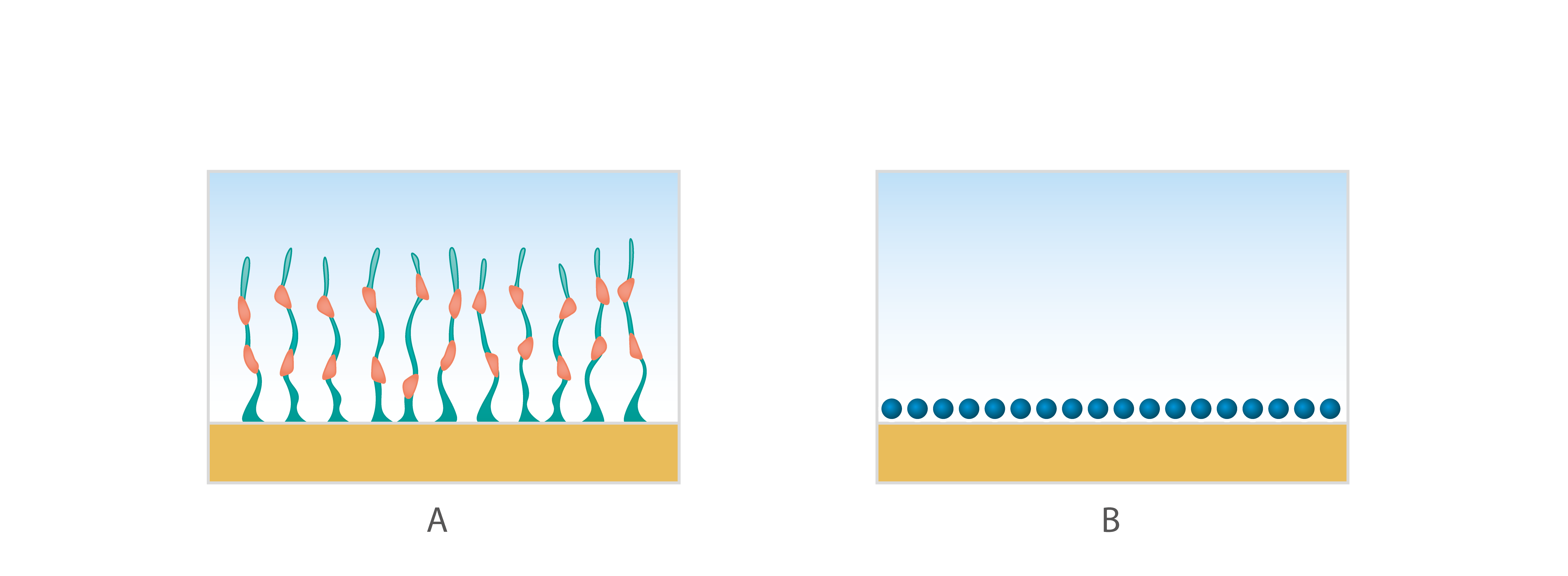 QSense Soft vs rigid layer