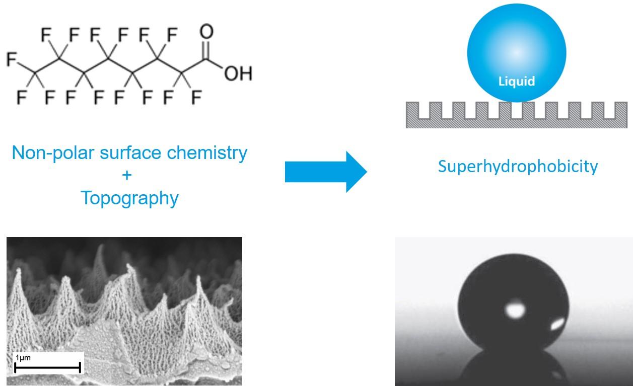 Superhydrophobicity explained