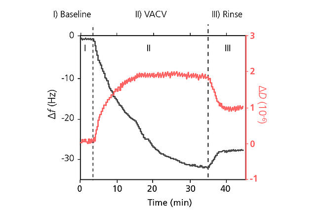 QCM-D analysis of VACV interaction with glass