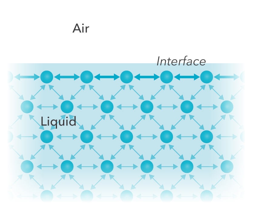 an analysis of the topic of the cohesive forces between liquid molecules Cohesion and adhesion in liquids: surface tension and liquids both within a liquid and between the cohesive forces between molecules cause the surface of a.