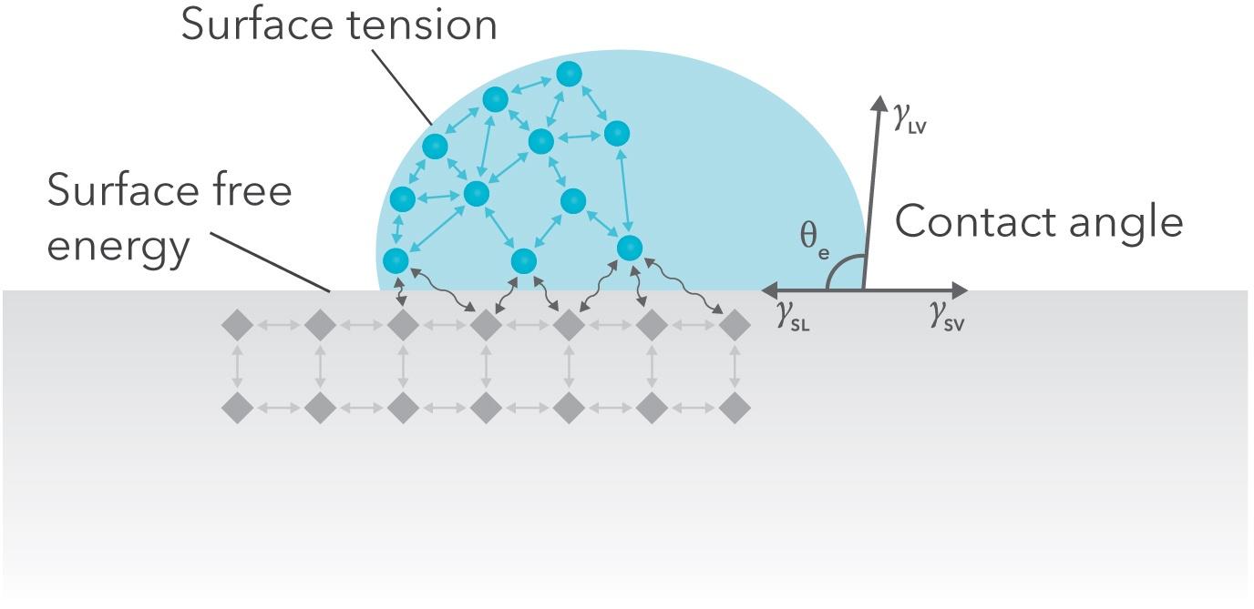 surface free energy.jpg
